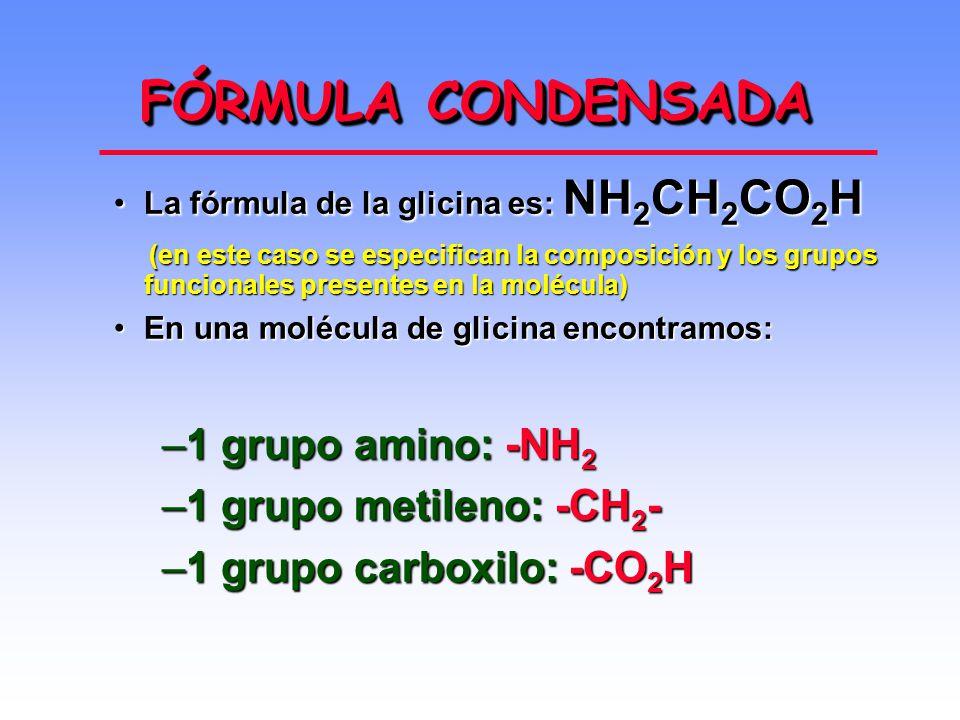 FÓRMULA CONDENSADA La fórmula de la glicina es: NH 2 CH 2 CO 2 HLa fórmula de la glicina es: NH 2 CH 2 CO 2 H (en este caso se especifican la composición y los grupos funcionales presentes en la molécula) (en este caso se especifican la composición y los grupos funcionales presentes en la molécula) En una molécula de glicina encontramos:En una molécula de glicina encontramos: –1 grupo amino: -NH 2 –1 grupo metileno: -CH 2 - –1 grupo carboxilo: -CO 2 H