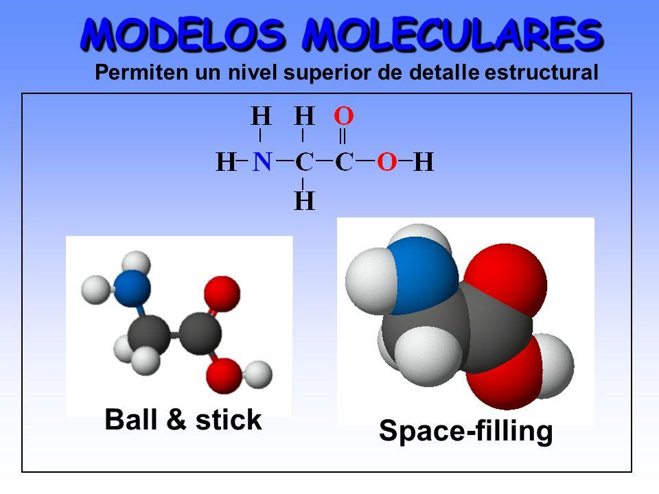 MODELOS MOLECULARES Ball & stick Space-filling Permiten un nivel superior de detalle estructural