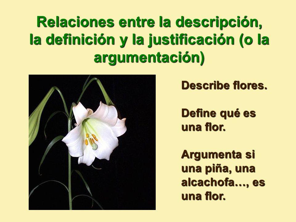 Describe flores.Define qué es una flor. Argumenta si una piña, una alcachofa…, es una flor.