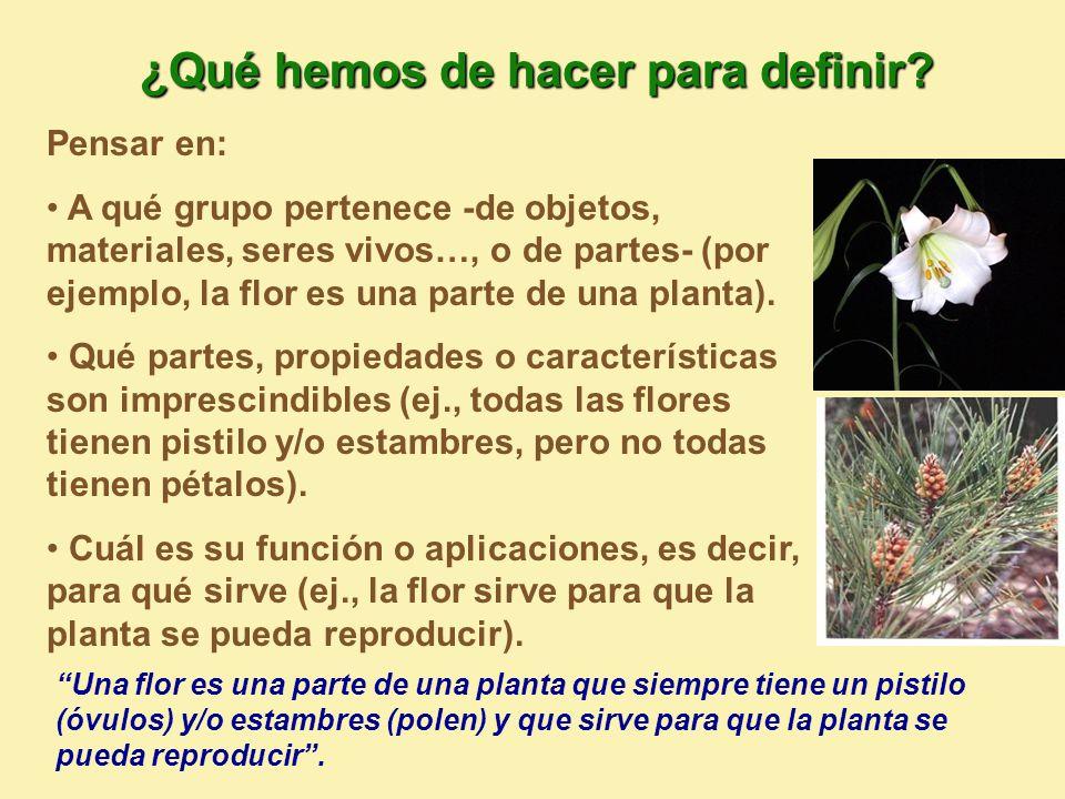 Pensar en: A qué grupo pertenece -de objetos, materiales, seres vivos…, o de partes- (por ejemplo, la flor es una parte de una planta).