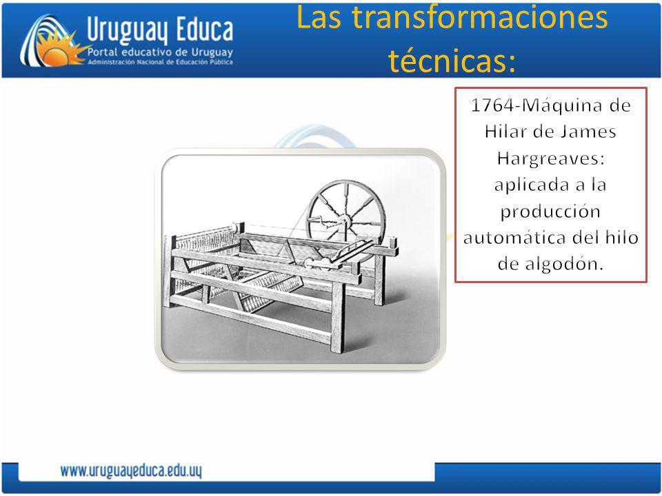 Transformaciones en el comercio El comercio aumentó sus volúmenes y diversificó sus posibilidades.