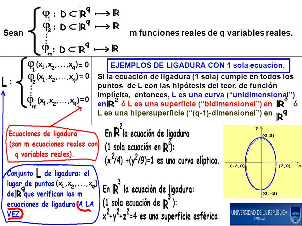 Sean m funciones reales de q variables reales. EJEMPLOS DE LIGADURA CON 1 sola ecuación. Si la ecuación de ligadura (1 sola) cumple en todos los punto