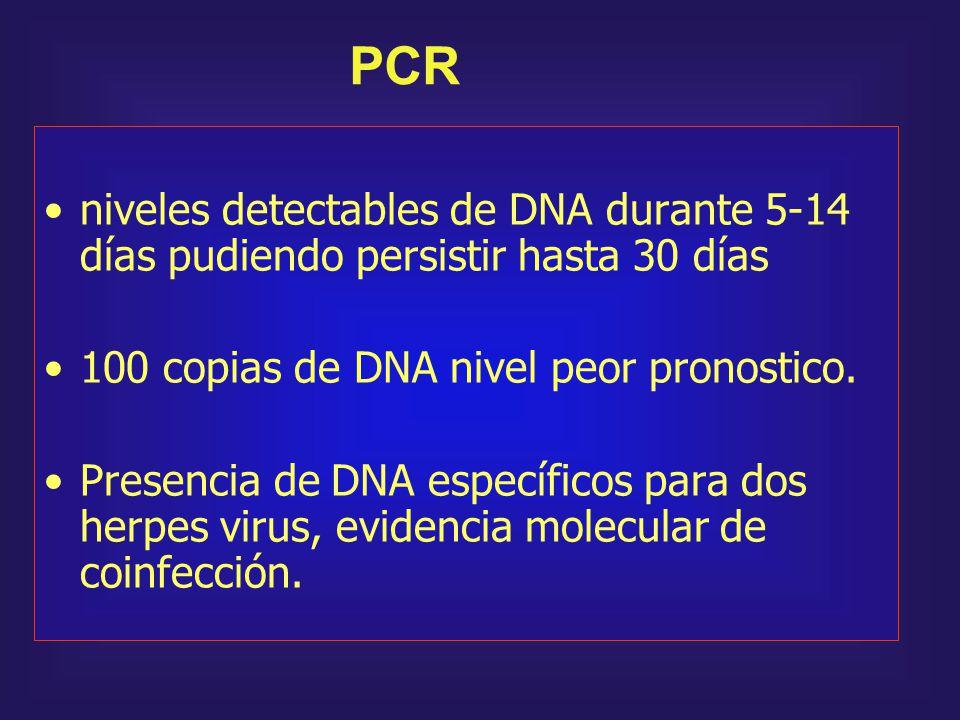 niveles detectables de DNA durante 5-14 días pudiendo persistir hasta 30 días 100 copias de DNA nivel peor pronostico. Presencia de DNA específicos pa