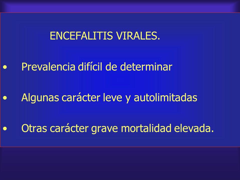 ENCEFALITIS VIRALES. Prevalencia difícil de determinar Algunas carácter leve y autolimitadas Otras carácter grave mortalidad elevada.