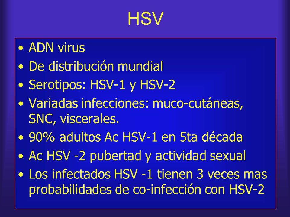 HSV ADN virus De distribución mundial Serotipos: HSV-1 y HSV-2 Variadas infecciones: muco-cutáneas, SNC, viscerales. 90% adultos Ac HSV-1 en 5ta décad