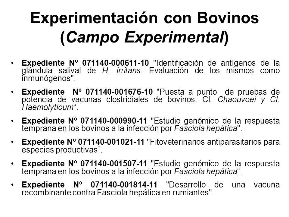 Experimentación con Bovinos (Campo Experimental) Expediente Nº 071140-000611-10 Identificación de antígenos de la glándula salival de H.