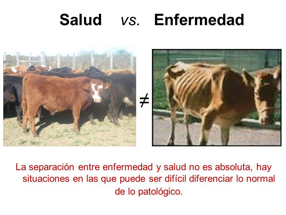 Salud vs.