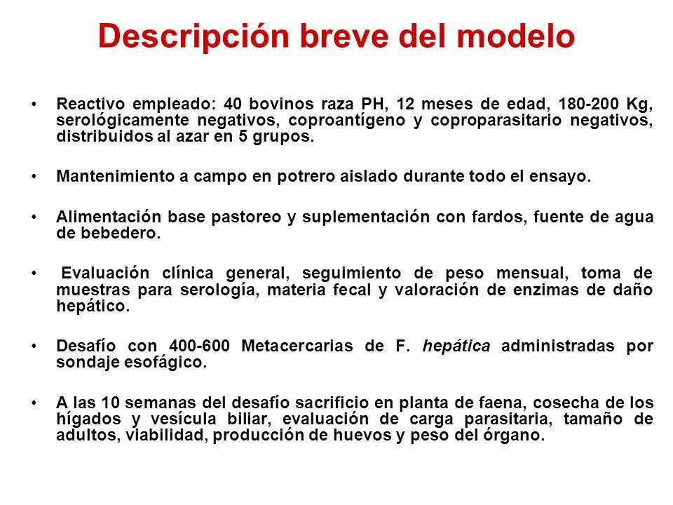 Descripción breve del modelo Reactivo empleado: 40 bovinos raza PH, 12 meses de edad, 180-200 Kg, serológicamente negativos, coproantígeno y coproparasitario negativos, distribuidos al azar en 5 grupos.