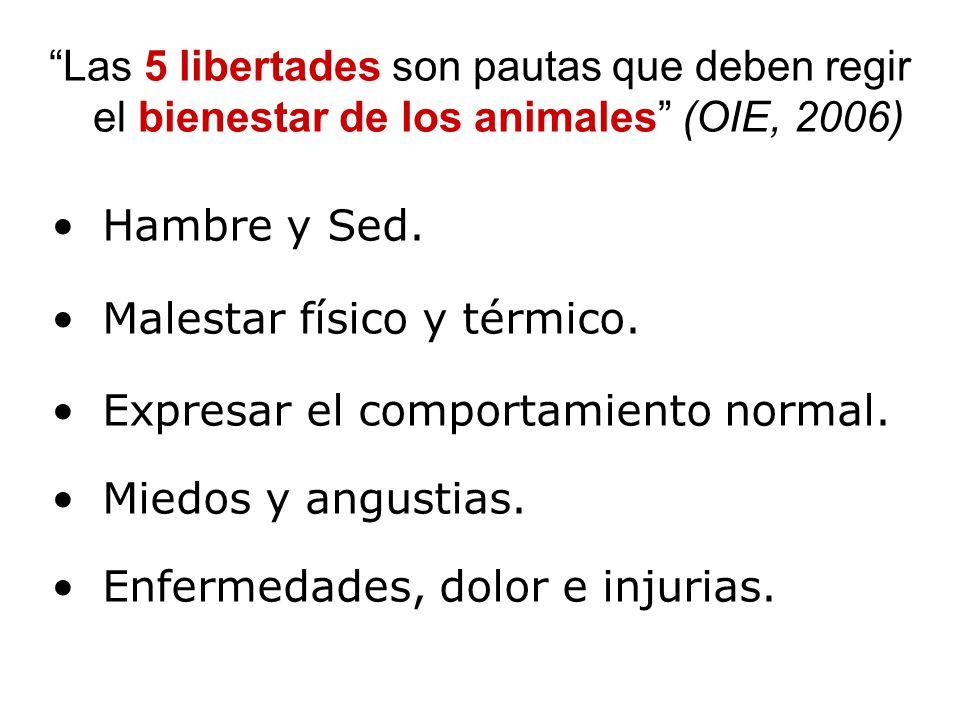 Las 5 libertades son pautas que deben regir el bienestar de los animales (OIE, 2006) Hambre y Sed.