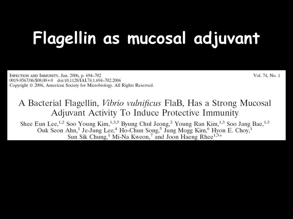 Flagellin as mucosal adjuvant
