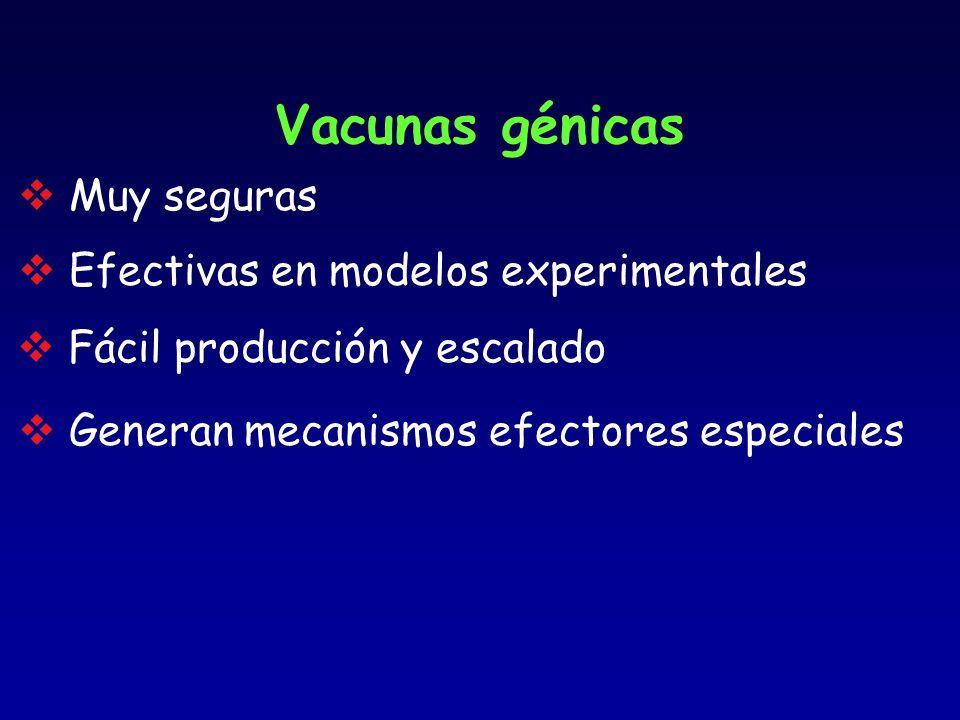 Vacunas génicas Muy seguras Fácil producción y escalado Efectivas en modelos experimentales Generan mecanismos efectores especiales