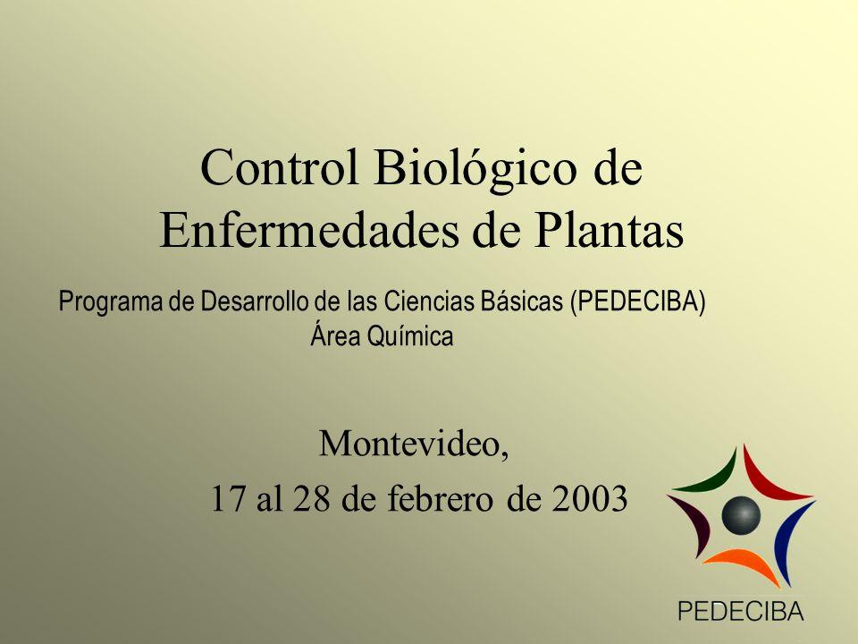 Control Biológico de Enfermedades de Plantas Montevideo, 17 al 28 de febrero de 2003 Programa de Desarrollo de las Ciencias Básicas (PEDECIBA) Área Qu