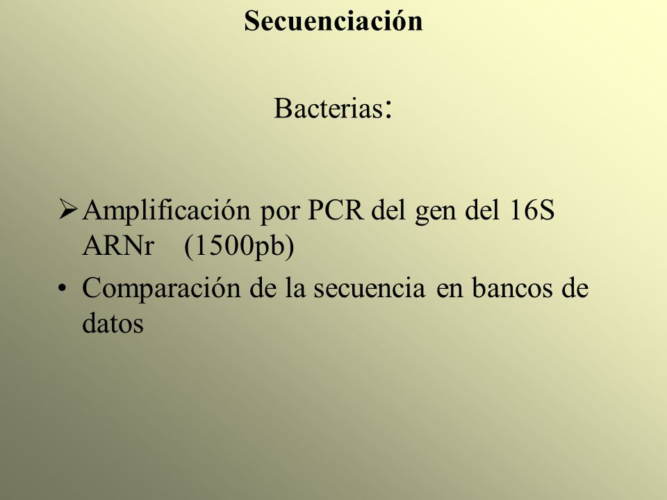 Secuenciación Bacterias : Amplificación por PCR del gen del 16S ARNr (1500pb) Comparación de la secuencia en bancos de datos