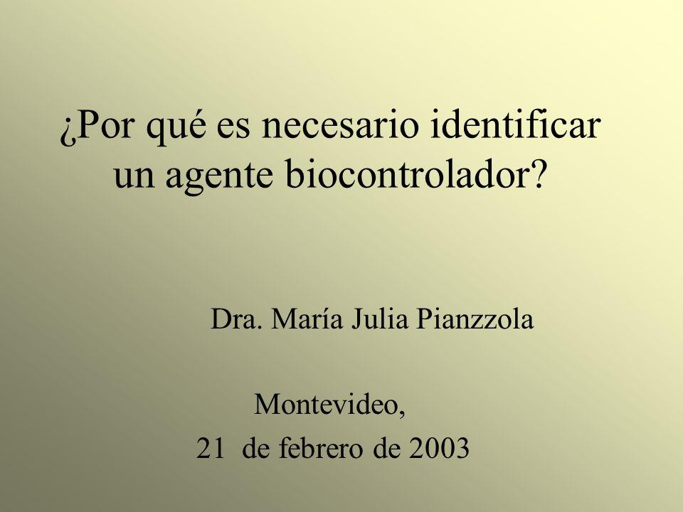 ¿Por qué es necesario identificar un agente biocontrolador? Montevideo, 21 de febrero de 2003 Dra. María Julia Pianzzola
