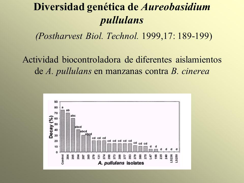 Diversidad genética de Aureobasidium pullulans (Postharvest Biol. Technol. 1999,17: 189-199) Actividad biocontroladora de diferentes aislamientos de A