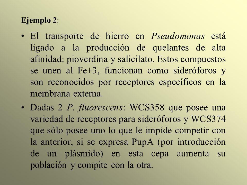 Ejemplo 2: El transporte de hierro en Pseudomonas está ligado a la producción de quelantes de alta afinidad: pioverdina y salicilato. Estos compuestos