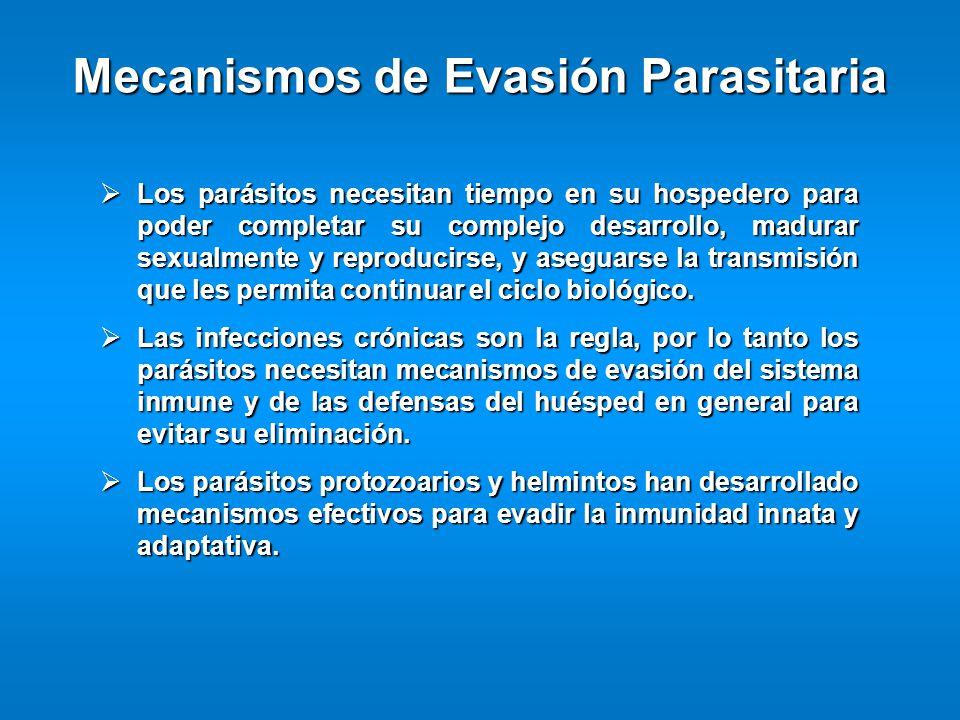 Los parásitos necesitan tiempo en su hospedero para poder completar su complejo desarrollo, madurar sexualmente y reproducirse, y aseguarse la transmi
