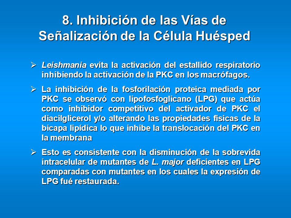 Leishmania evita la activación del estallido respiratorio inhibiendo la activación de la PKC en los macrófagos. Leishmania evita la activación del est