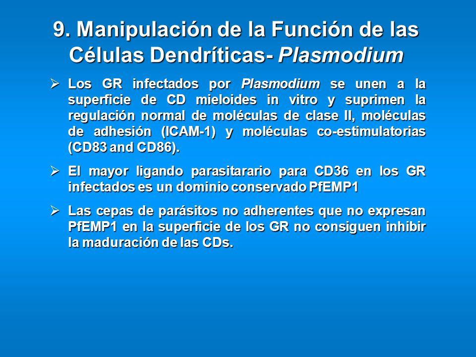 Los GR infectados por Plasmodium se unen a la superficie de CD mieloides in vitro y suprimen la regulación normal de moléculas de clase II, moléculas