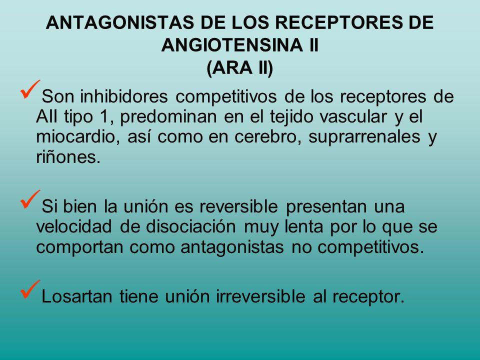 ANTAGONISTAS DE LOS RECEPTORES DE ANGIOTENSINA II (ARA II) Son inhibidores competitivos de los receptores de AII tipo 1, predominan en el tejido vascu