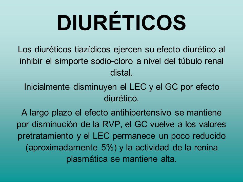 Los diuréticos tiazídicos ejercen su efecto diurético al inhibir el simporte sodio-cloro a nivel del túbulo renal distal. Inicialmente disminuyen el L