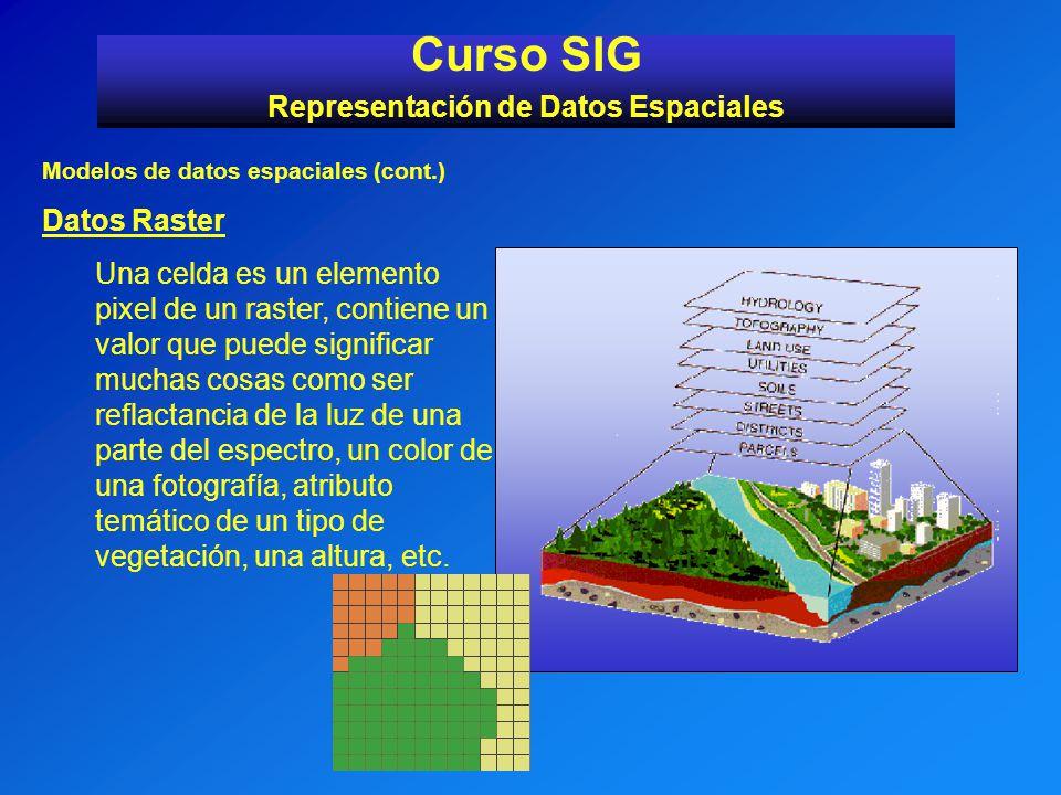 Modelos de datos espaciales (cont.) Datos Raster Una celda es un elemento pixel de un raster, contiene un valor que puede significar muchas cosas como