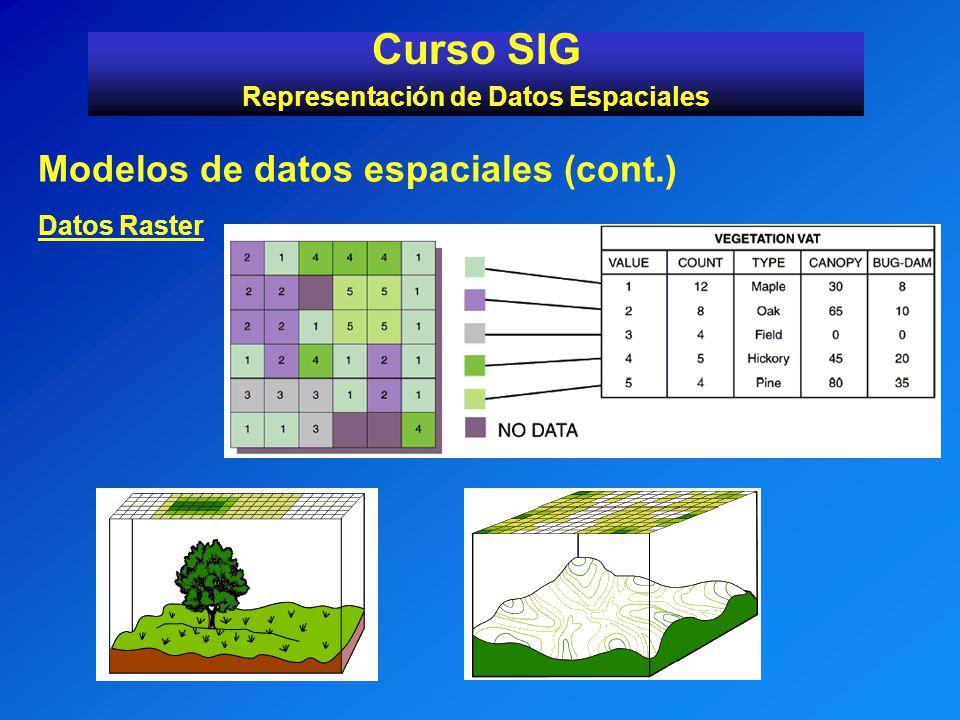 Modelos de datos espaciales (cont.) Datos Raster Curso SIG Representación de Datos Espaciales