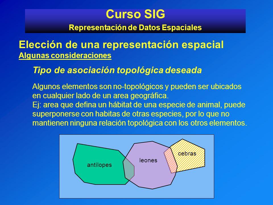 Curso SIG Representación de Datos Espaciales Elección de una representación espacial Algunas consideraciones Tipo de asociación topológica deseada Alg
