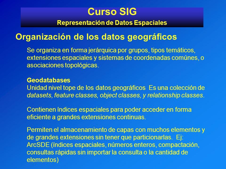 Curso SIG Representación de Datos Espaciales Organización de los datos geográficos Se organiza en forma jerárquica por grupos, tipos temáticos, extens