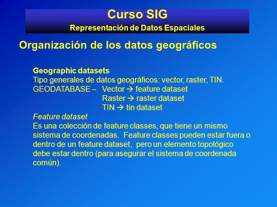 Curso SIG Representación de Datos Espaciales Organización de los datos geográficos Geographic datasets Tipo generales de datos geográficos: vector, ra