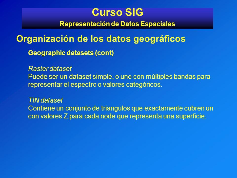 Curso SIG Representación de Datos Espaciales Organización de los datos geográficos Geographic datasets (cont) Raster dataset Puede ser un dataset simp