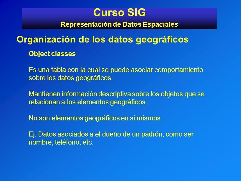 Curso SIG Representación de Datos Espaciales Organización de los datos geográficos Object classes Es una tabla con la cual se puede asociar comportami