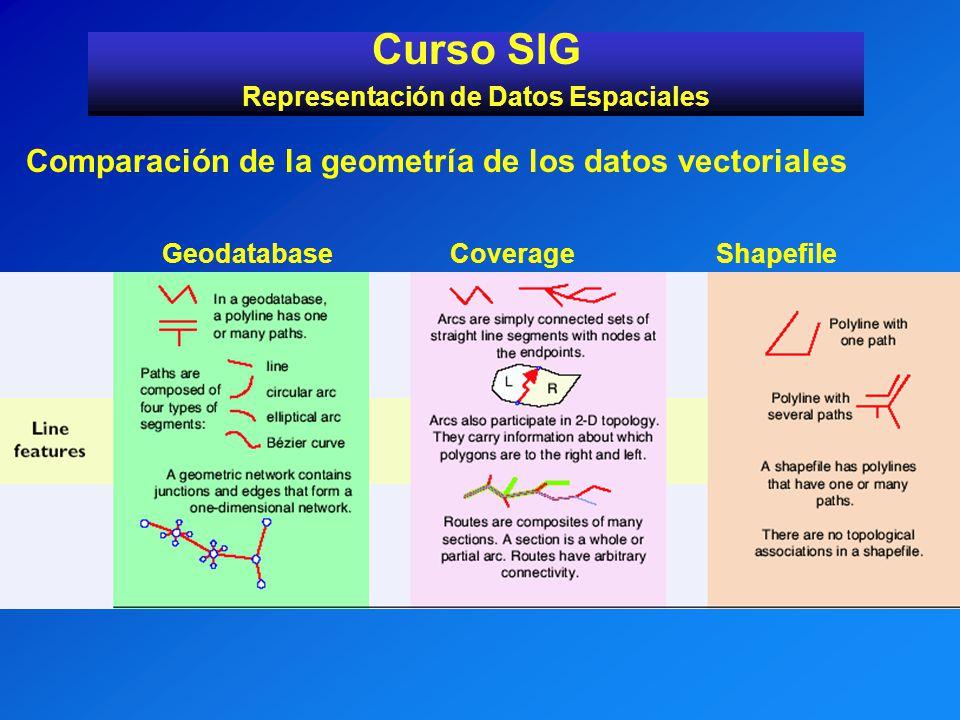 Curso SIG Representación de Datos Espaciales Comparación de la geometría de los datos vectoriales GeodatabaseCoverage Shapefile