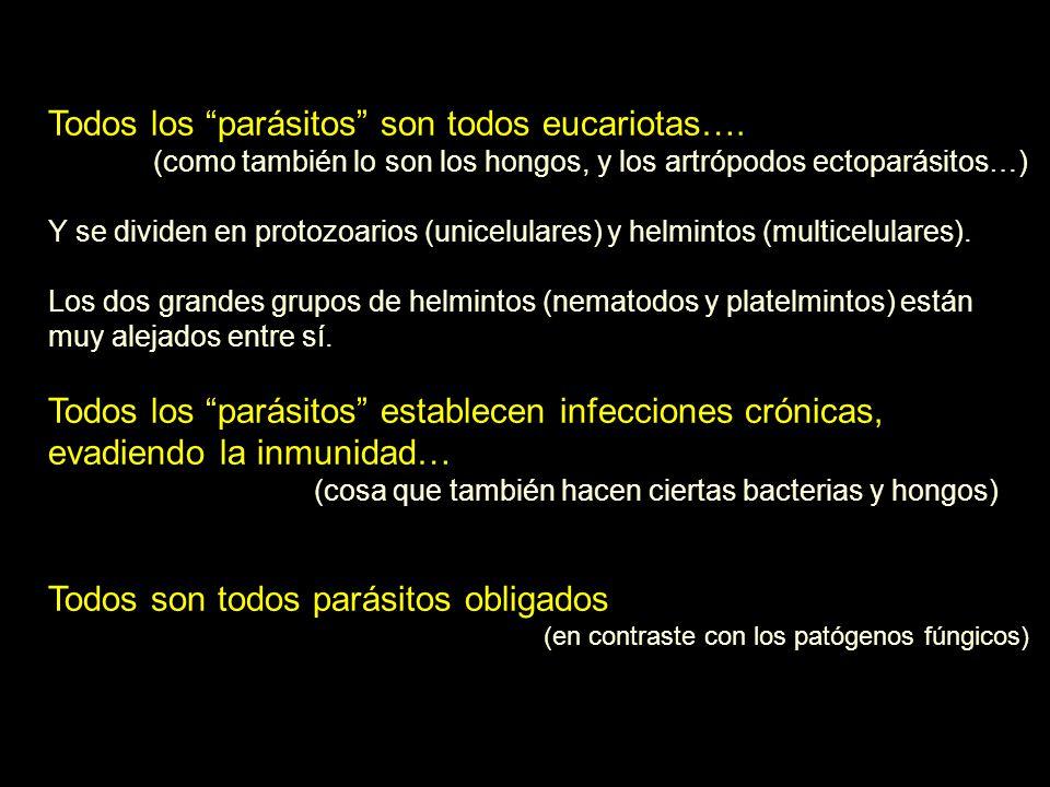 Todos los parásitos son todos eucariotas….