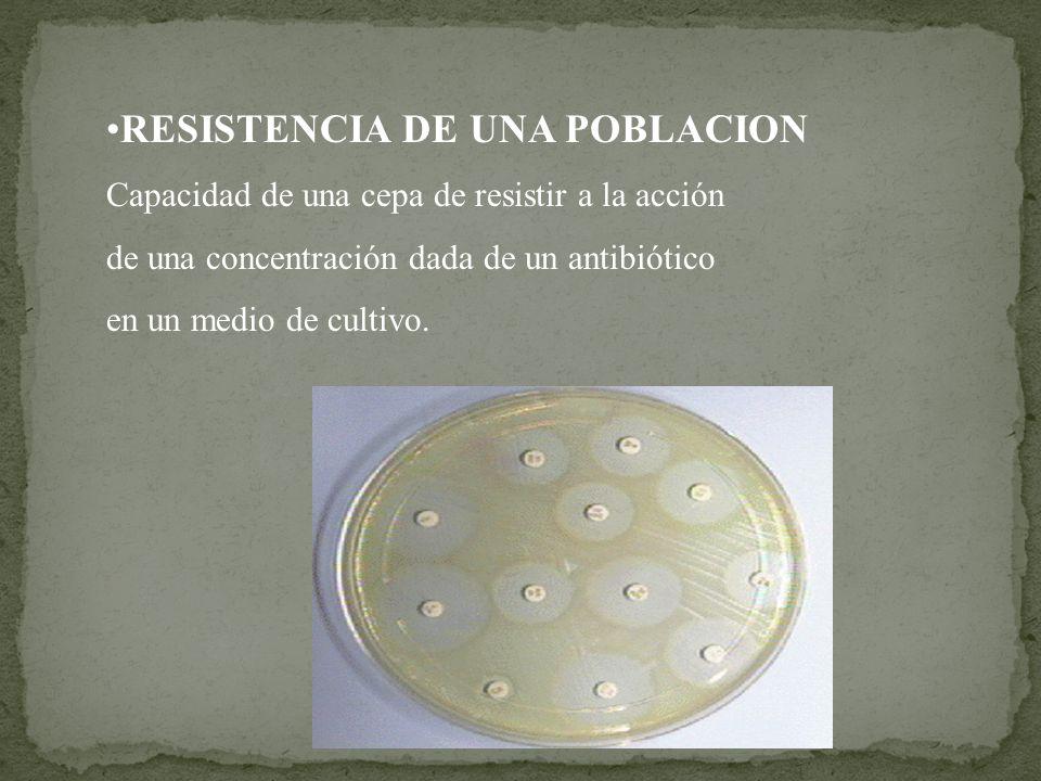 RESISTENCIA DE UNA POBLACION Capacidad de una cepa de resistir a la acción de una concentración dada de un antibiótico en un medio de cultivo.