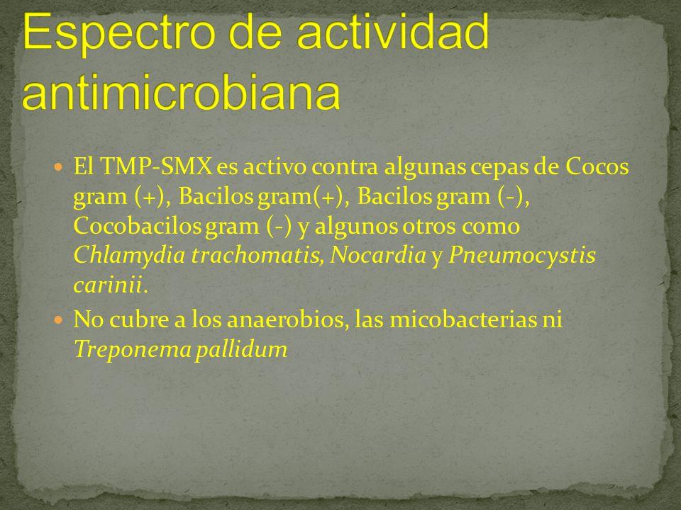 El TMP-SMX es activo contra algunas cepas de Cocos gram (+), Bacilos gram(+), Bacilos gram (-), Cocobacilos gram (-) y algunos otros como Chlamydia tr
