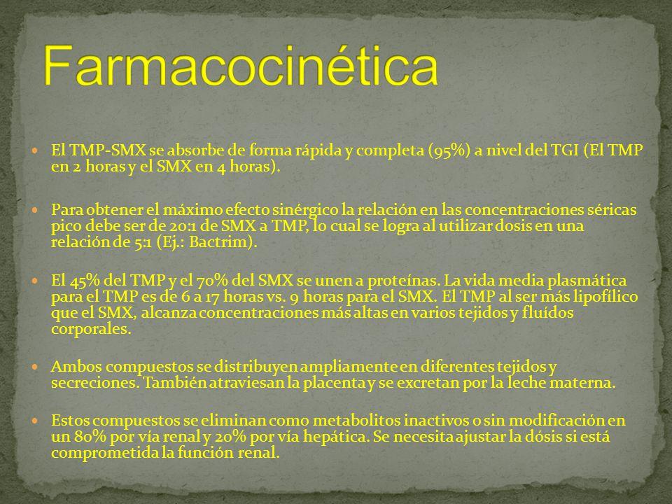 El TMP-SMX se absorbe de forma rápida y completa (95%) a nivel del TGI (El TMP en 2 horas y el SMX en 4 horas). Para obtener el máximo efecto sinérgic