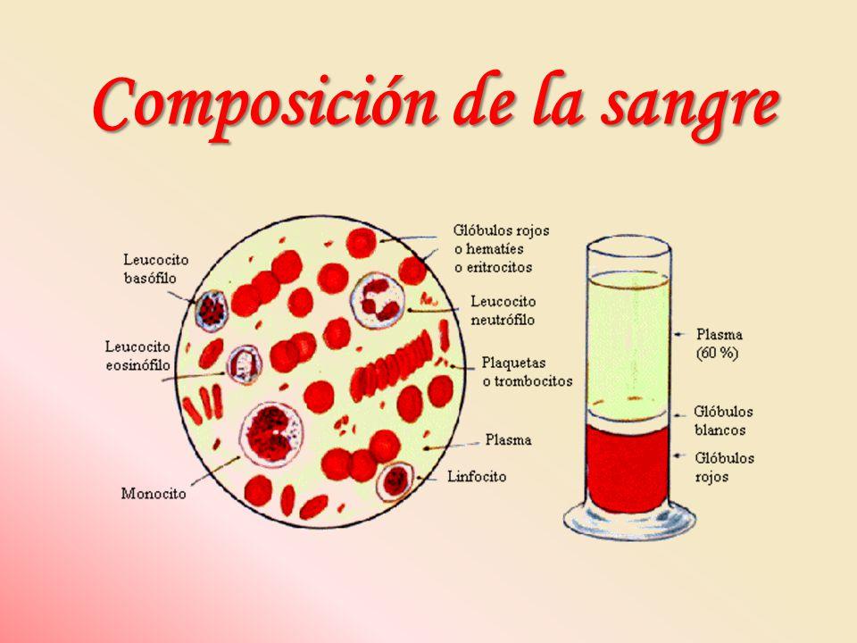 Estructura del grupo hemoModelo sticks del grupo hemo Cada subunidad de globina tiene unido un grupo hemo (una molécula de protoporfirina IX complejada con un ion Fe 2+ ), responsable del color rojo de la hemoglobina y de la sangre.