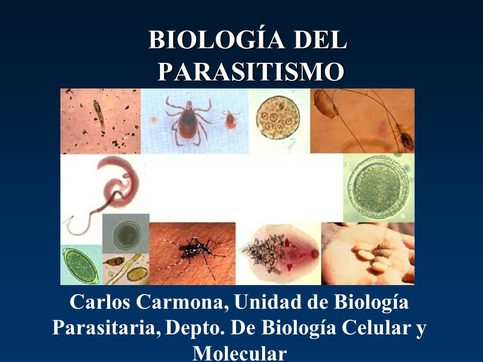 BIOLOGÍA DEL PARASITISMO Carlos Carmona, Unidad de Biología Parasitaria, Depto. De Biología Celular y Molecular