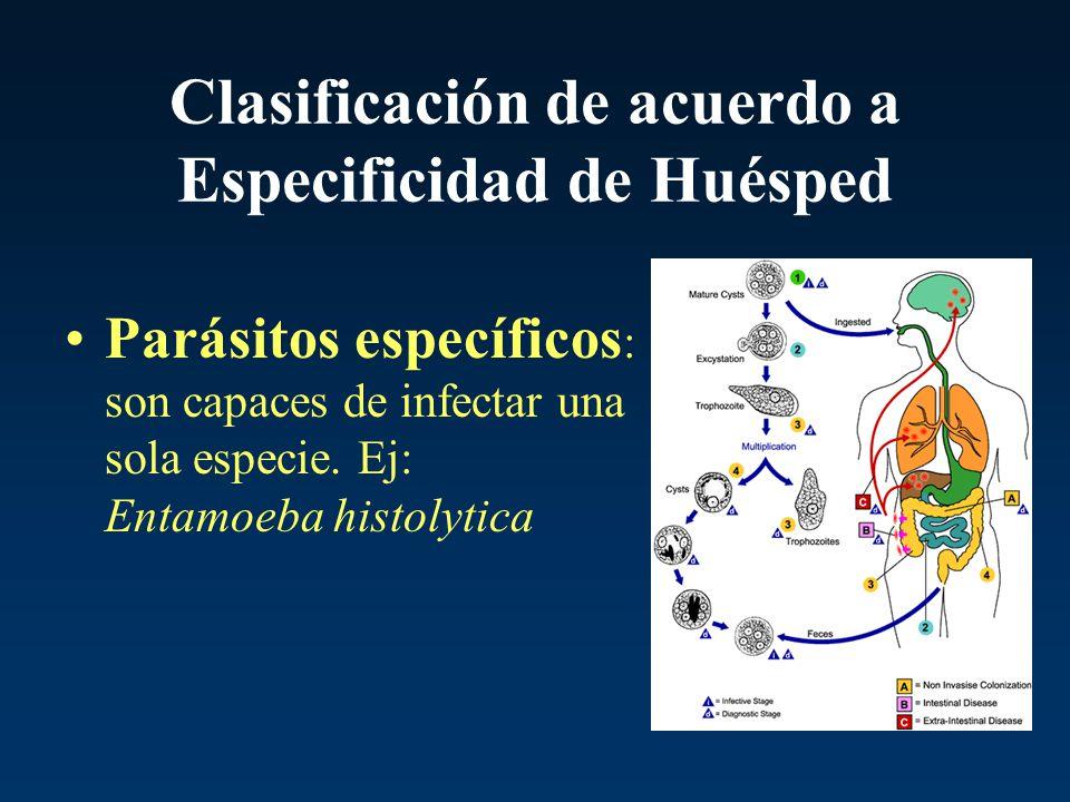 Clasificación de acuerdo a Especificidad de Huésped Parásitos específicos : son capaces de infectar una sola especie. Ej: Entamoeba histolytica