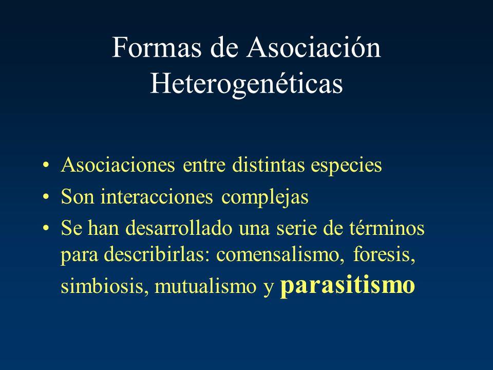 Formas de Asociación Heterogenéticas Asociaciones entre distintas especies Son interacciones complejas Se han desarrollado una serie de términos para
