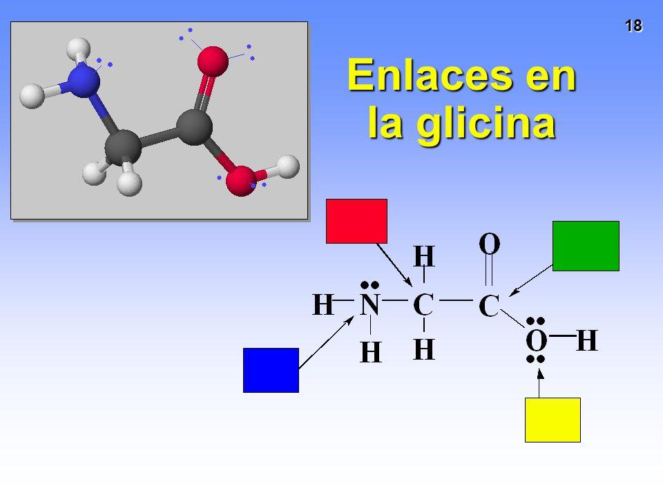 18 Enlaces en la glicina