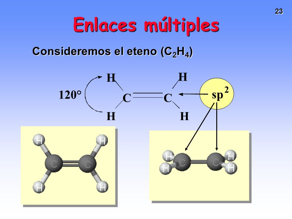 23 C H H H H sp 2 120° C Enlaces múltiples Consideremos el eteno (C 2 H 4 )