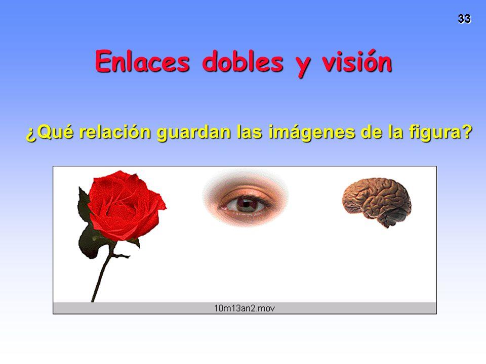 33 Enlaces dobles y visión ¿Qué relación guardan las imágenes de la figura?
