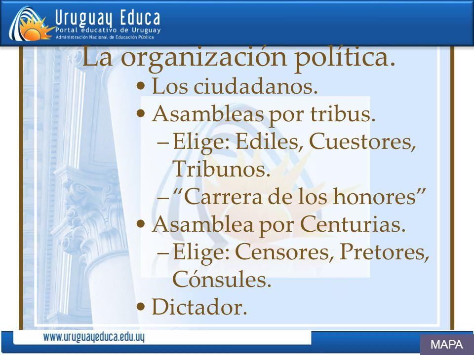 La organización política. Los ciudadanos. Asambleas por tribus. –Elige: Ediles, Cuestores, Tribunos. –Carrera de los honores Asamblea por Centurias. –