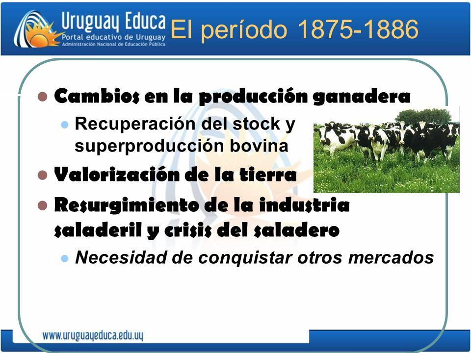 El período 1875-1886 Cambios en la producción ganadera Recuperación del stock y superproducción bovina Valorización de la tierra Resurgimiento de la i