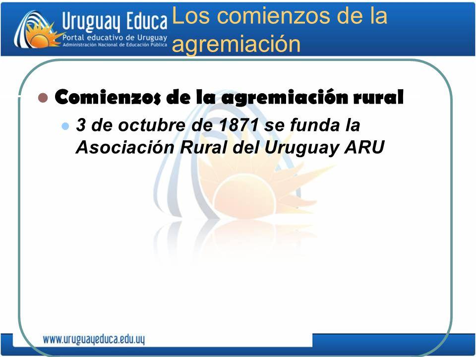 Los comienzos de la agremiación Comienzos de la agremiación rural 3 de octubre de 1871 se funda la Asociación Rural del Uruguay ARU