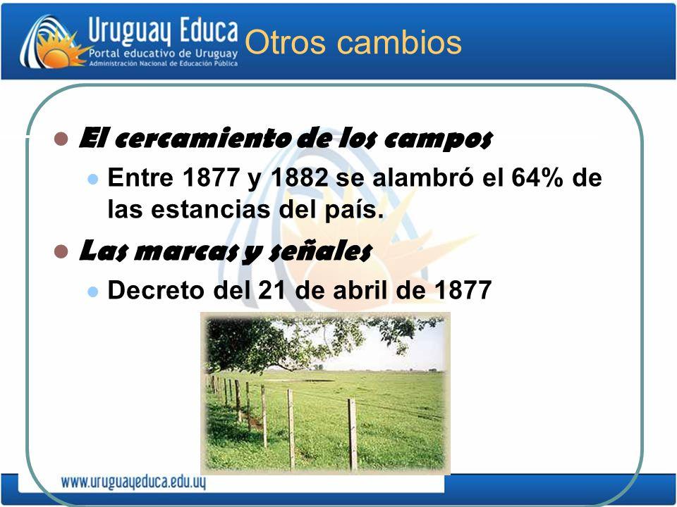 Otros cambios El cercamiento de los campos Entre 1877 y 1882 se alambró el 64% de las estancias del país. Las marcas y señales Decreto del 21 de abril