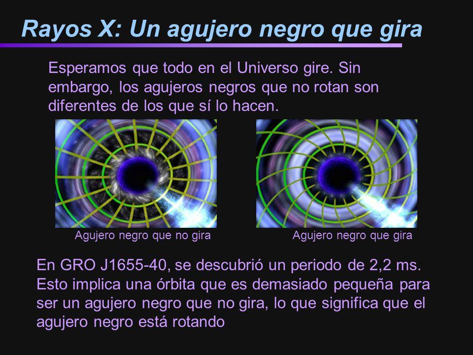 Rayos X: Un agujero negro que gira Esperamos que todo en el Universo gire. Sin embargo, los agujeros negros que no rotan son diferentes de los que sí