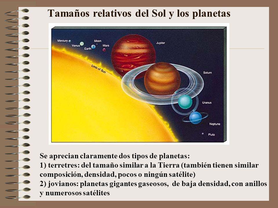 Tamaños relativos del Sol y los planetas Se aprecian claramente dos tipos de planetas: 1) terretres: del tamaño similar a la Tierra (también tienen si